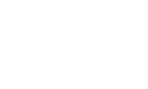 Optimum Hunting